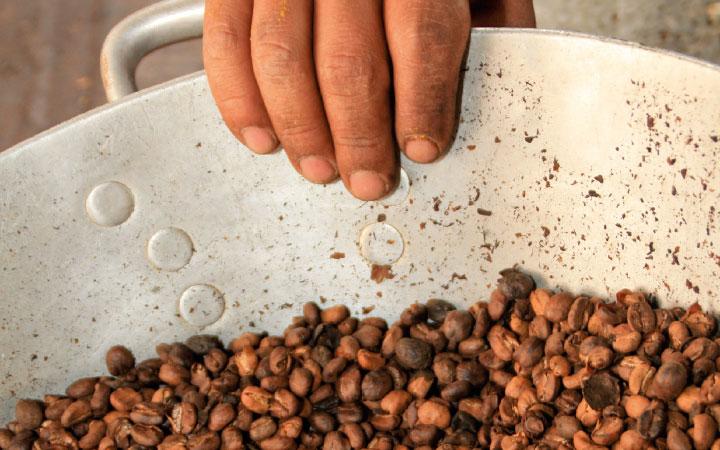 Ausgezeichnete Kaffee-Qualität